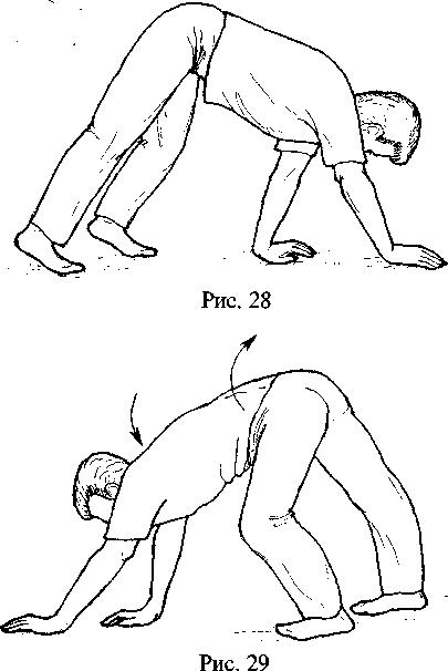 kak-vliyaet-pozvonochnik-na-orgazm
